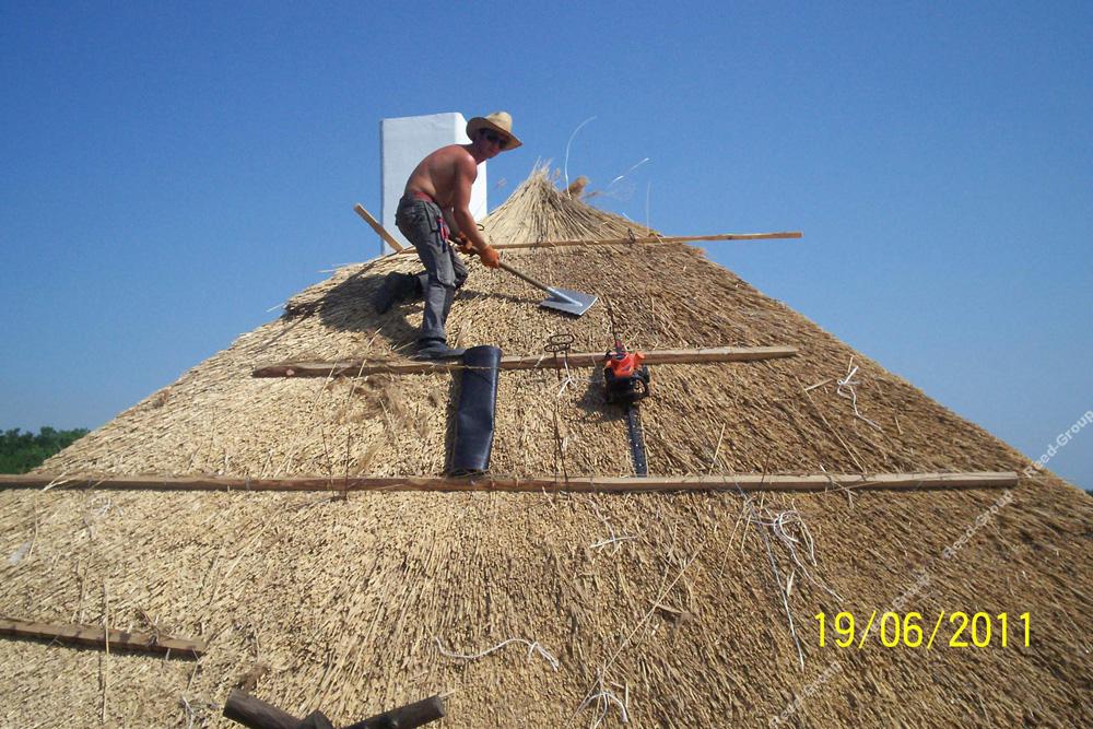 Камыш на крышу своими руками 94